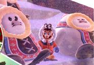 Snow Kingdom Seals