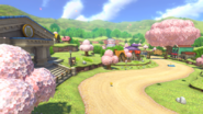 Animal Crossing - MK8 (printemps) 2