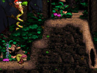 DKC2 Screenshot Sturmwald