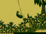 Simian Swing