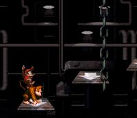 DKC Screenshot Koma Keller