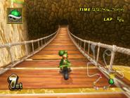 Jungle DK - MKWii 4
