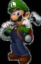 LM-Luigi-3