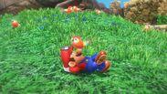 Mario oiseau