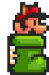 Mario bota