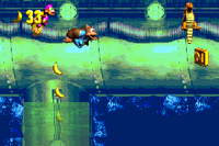 DKC3 Screenshot Dingy Drain-Pipe