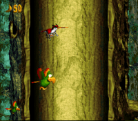 DKC3 Screenshot Swoopie-Doopie