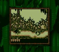 DKL Screenshot Jungle Jaunt