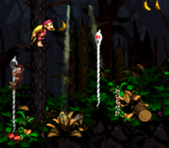 DKC2 Screenshot Geistergrube 2