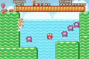 Trouter (World 3-3, Super Mario Advance)