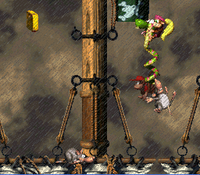 DKC2 Screenshot Segel-Trauma