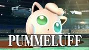 Pummeluff Intro Brawl