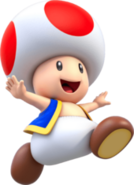 Toad Super Mario Run