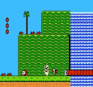 Invicible Luigi in Super Mario Bros. 2