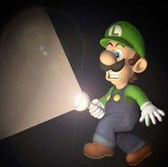 LM Artwork Luigi