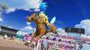 Larry Equestrian