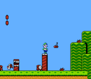 Luigi SMB2