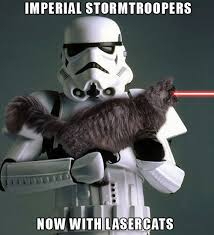 Laser cats taking over teh world