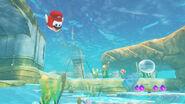 SMO-Pays de la Mer-Underwater