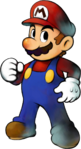 Mario MLSS