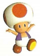 Toad hands raised Mario Party