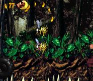 DKC2 Screenshot Dschungelzauber 2