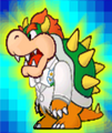 SPM Screenshot Bowser Fangkarte 2