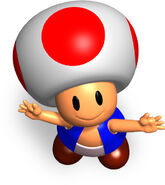 Mp toad