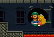 Luigi save Princess Peach