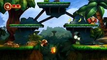 DKCR Screenshot 1-1 Dschungel-Fieber (O)