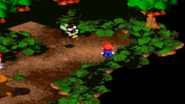 Forest Maze 9