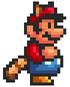 Mario-Mapache