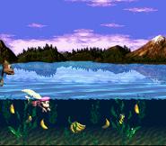 Lakeside Limbo - Swimming