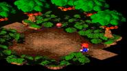 Forest Maze 1