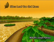 MKW D.K.'s Jungle Parkway
