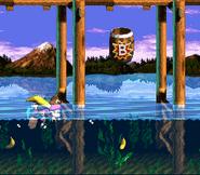 Lakeside Limbo - Bonus Level Two