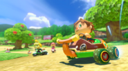 Animal Crossing - MK8 (été) 3