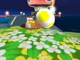 Toad jaune (Brigade Toad)