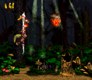 DKC2 Screenshot Geistergrube 3