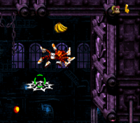 DKC3 Screenshot Alligator-Attentat
