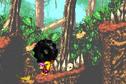 DKC2GBA Screenshot Dschungelzauber