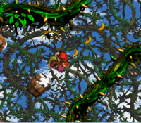 DKC2 Screenshot Affen-Action