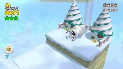 Super Mario 3D World (Wii U) Super Speed Exploit (World 6-5 in 028 Clear Time!)