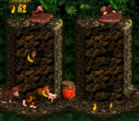 DKC Screenshot Geier-Feier