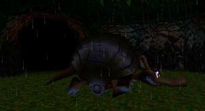 DK64 Screenshot Army Dillo 5