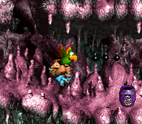DKC3 Screenshot Höhlen-Humbug