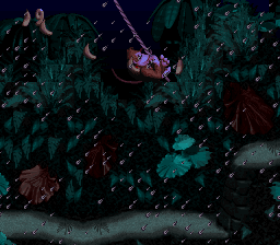 Ropey Rampage (Rope Swinging, Donkey Kong Country)