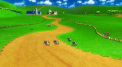 MKW Screenshot Kuhmuh-Weide