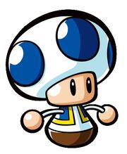 Mini-Toad 2