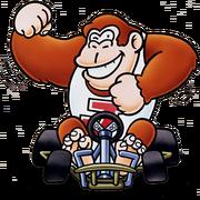 Donkey Kong Jr. (SMK)
